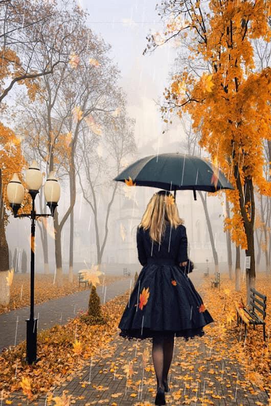 Вымаливала осень