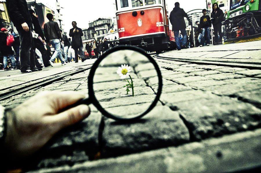 Счастье в мире разное...