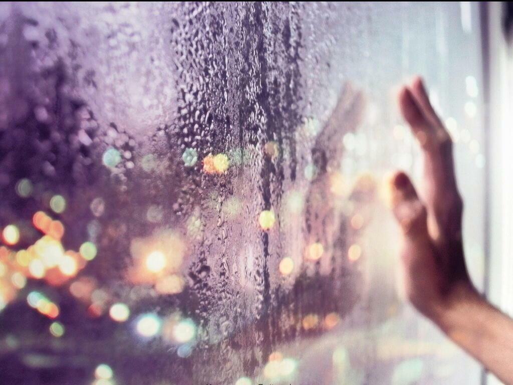 За прозрачной ширмой окна
