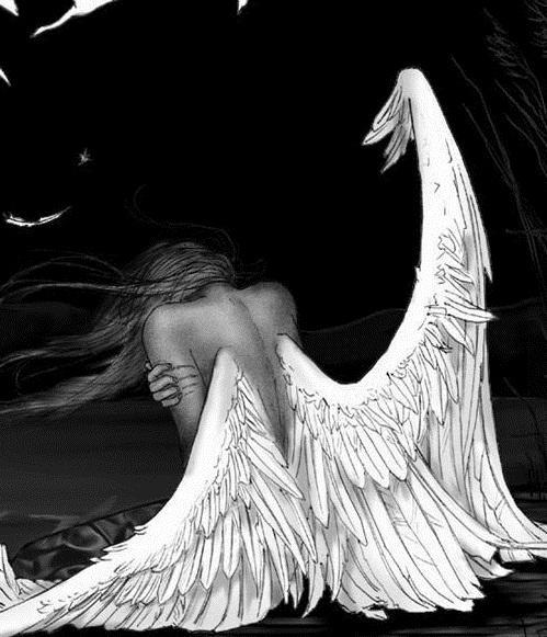 ошибочно анимационные картинки ангелов с одним крылом работе крана