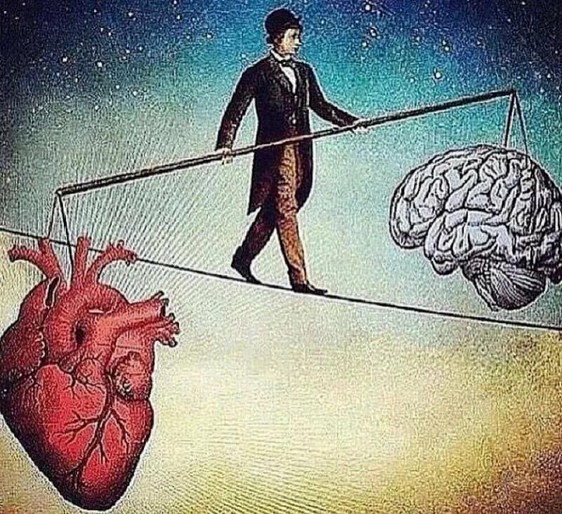 Разум и чувства