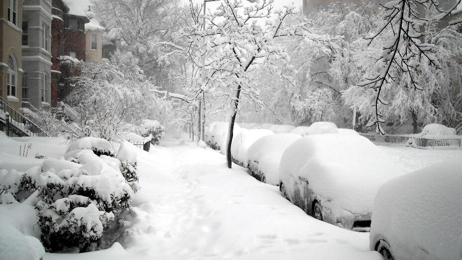 большой снегопад картинки был тяжёлый перелёт