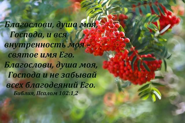 Благослови, душа моя Господа