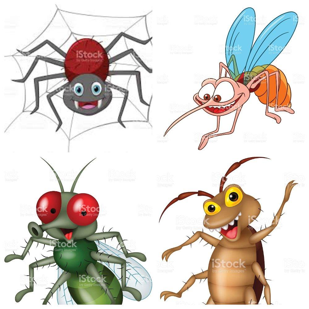 Комар и муха картинка