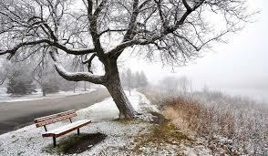 Мало как-то снега для зимнего стихотворения…