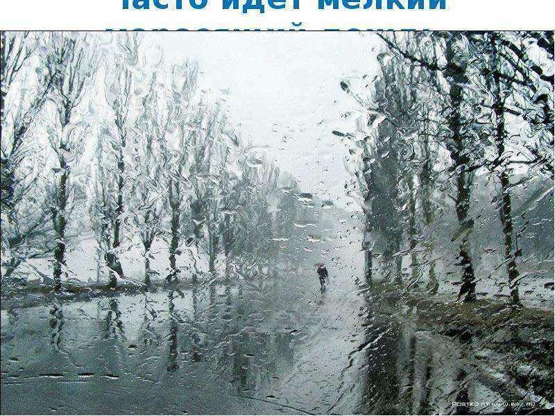 Дожди, туманы, осень...