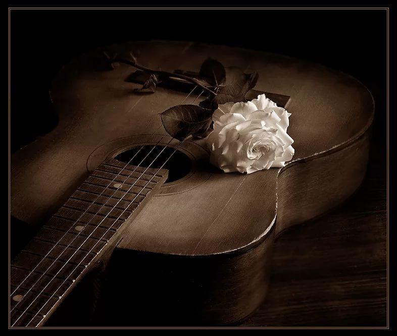 Красивая музыка гифы