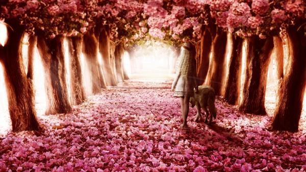 Як люблю час, коли на серці квіти
