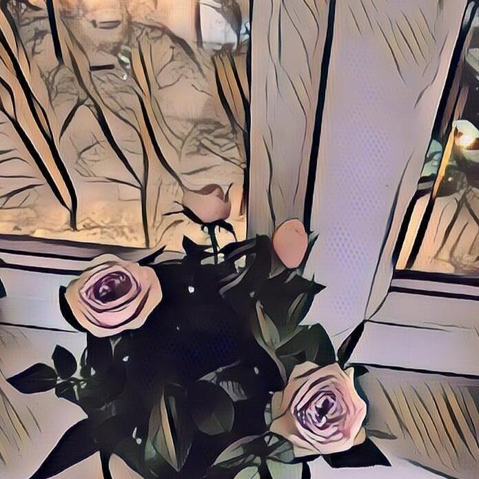 Расцветала роза в январе