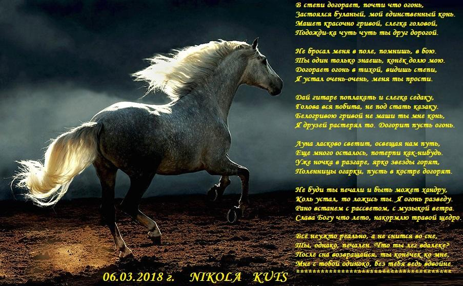 Стихи про лошадок