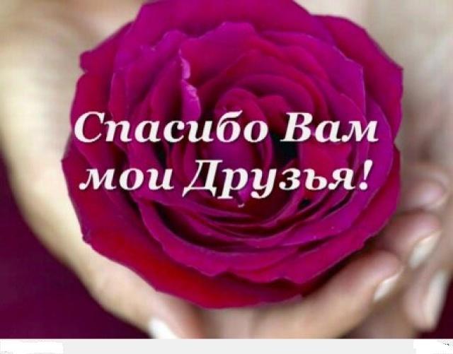 Дорогие мои любимые друзья спасибо за поздравления 62
