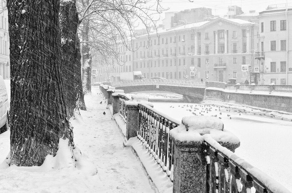 Снова зима завьюжит