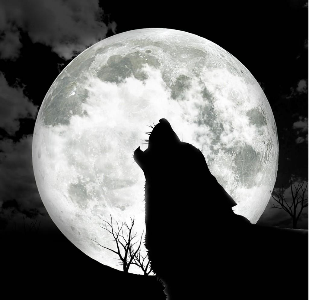 несколько картинки на аву луна вполне