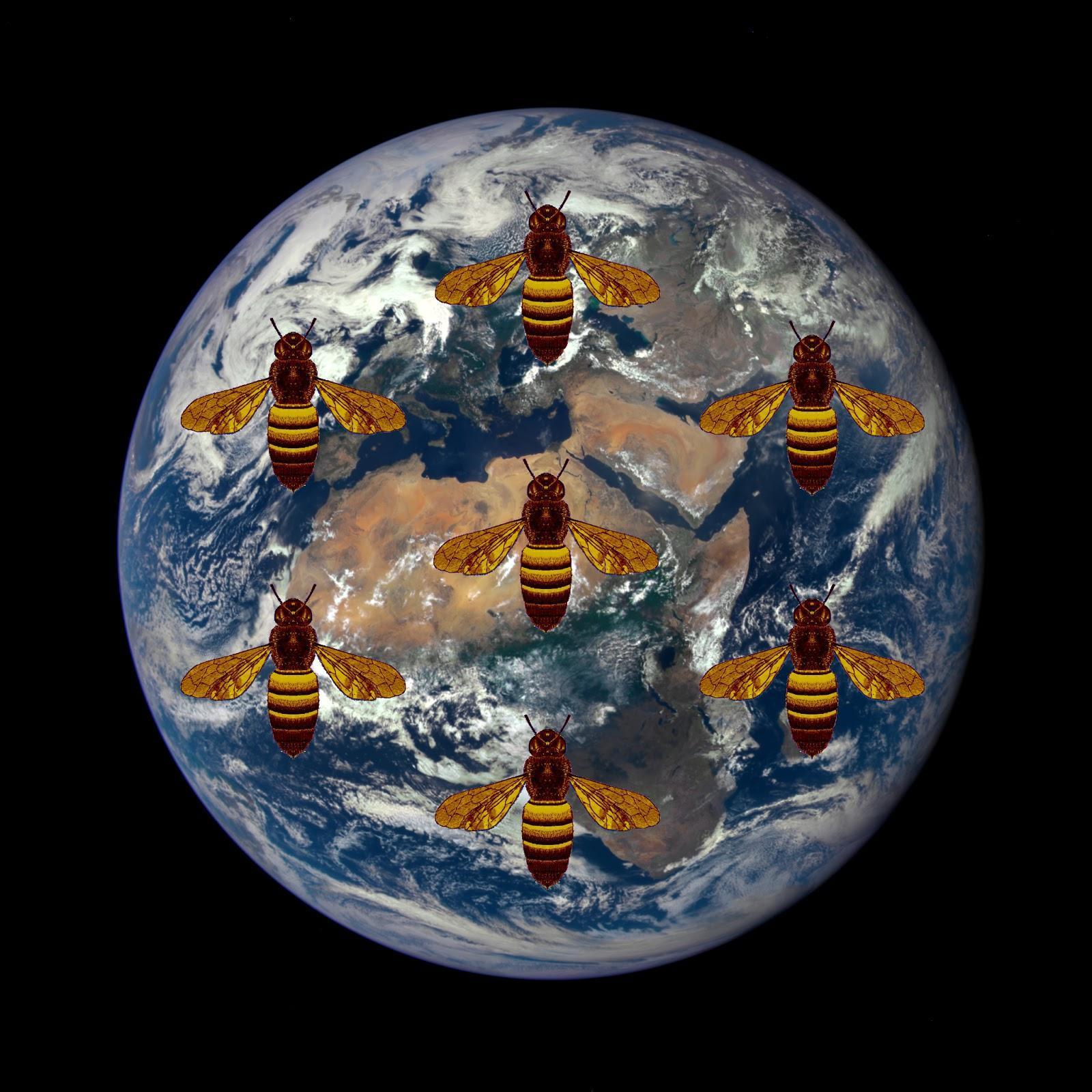 Космический мёд