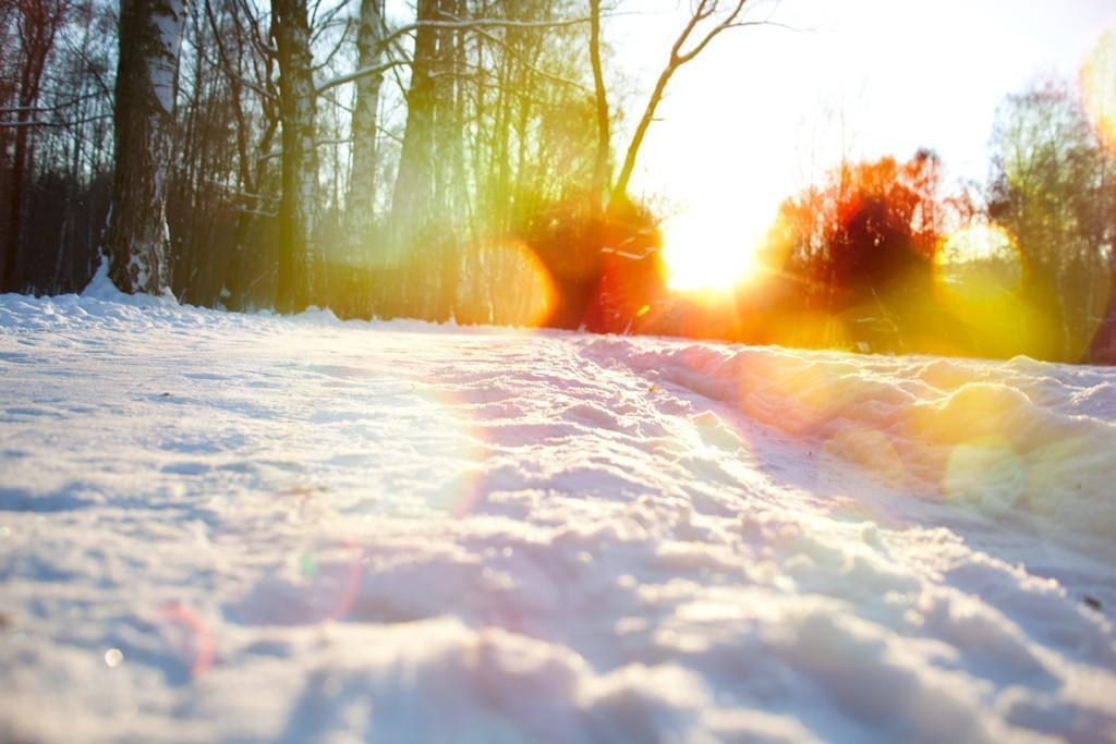 схемы яркое солнце весной фото тумана