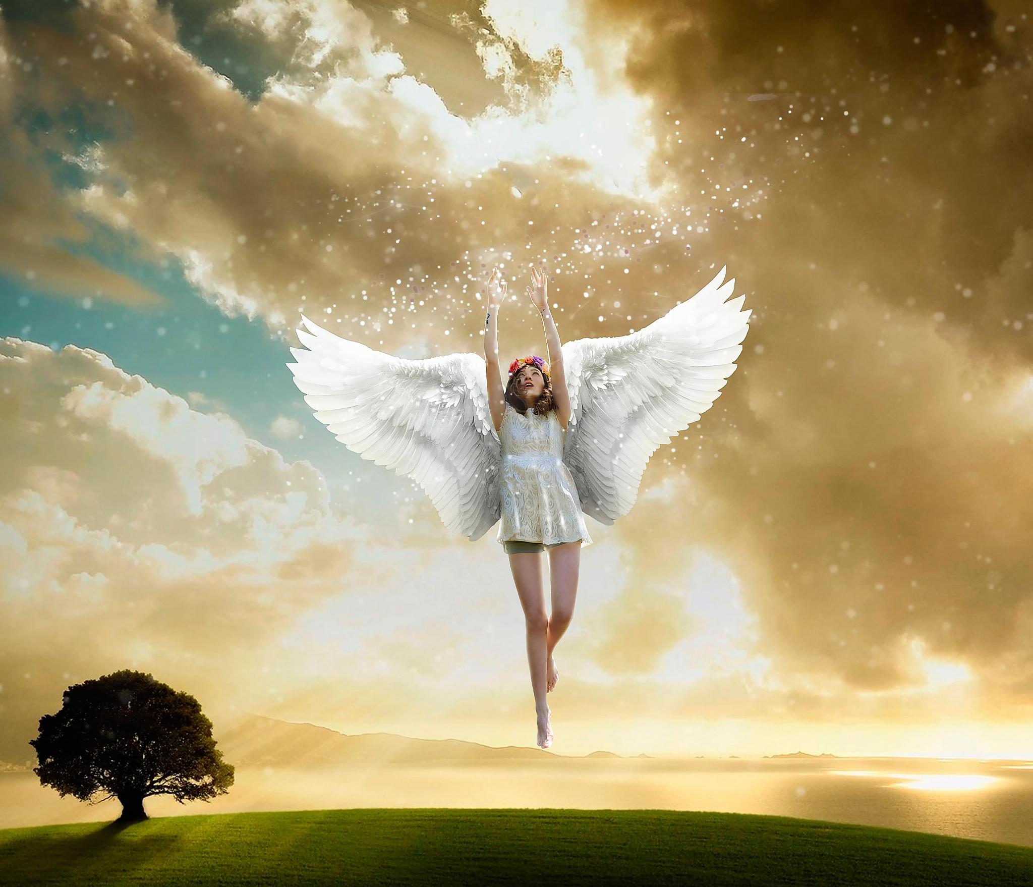 художник может картинки ангел мой не улетай полипы прямой кишки