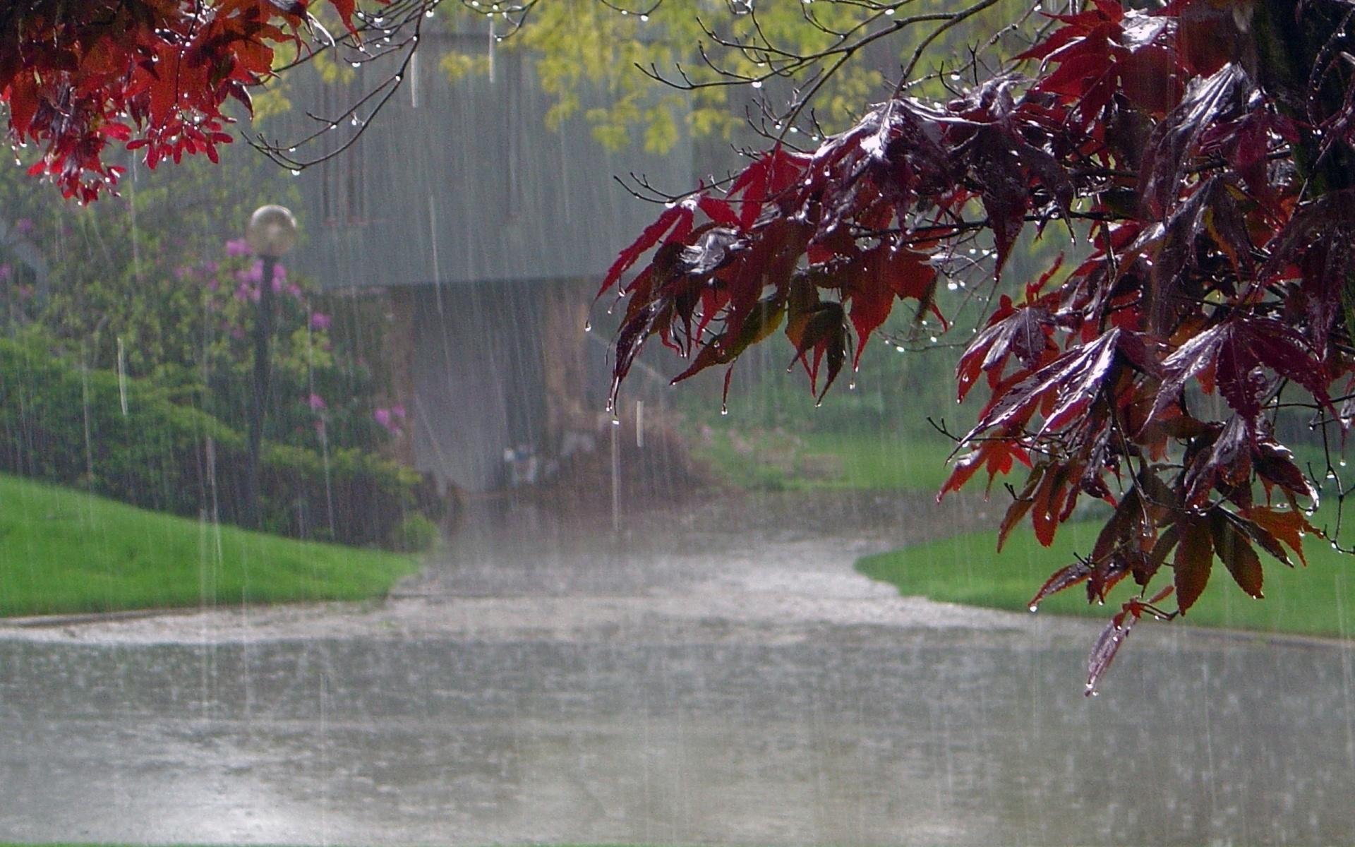 современном картинка погода дождливая для вас слова