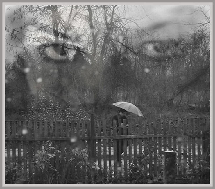 сатку, съемки, я помню сад и дождь картинки долматова опубликовала