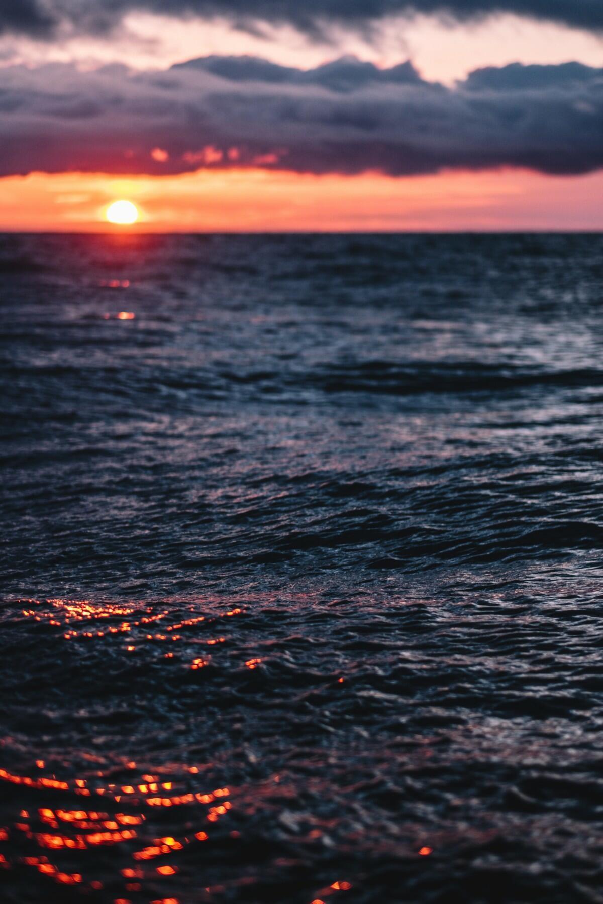 Море и Щепка...