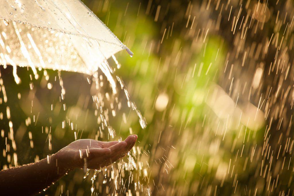 Прогноз погоды на 17 апреля: дожди пройдут почти на всей территории страны