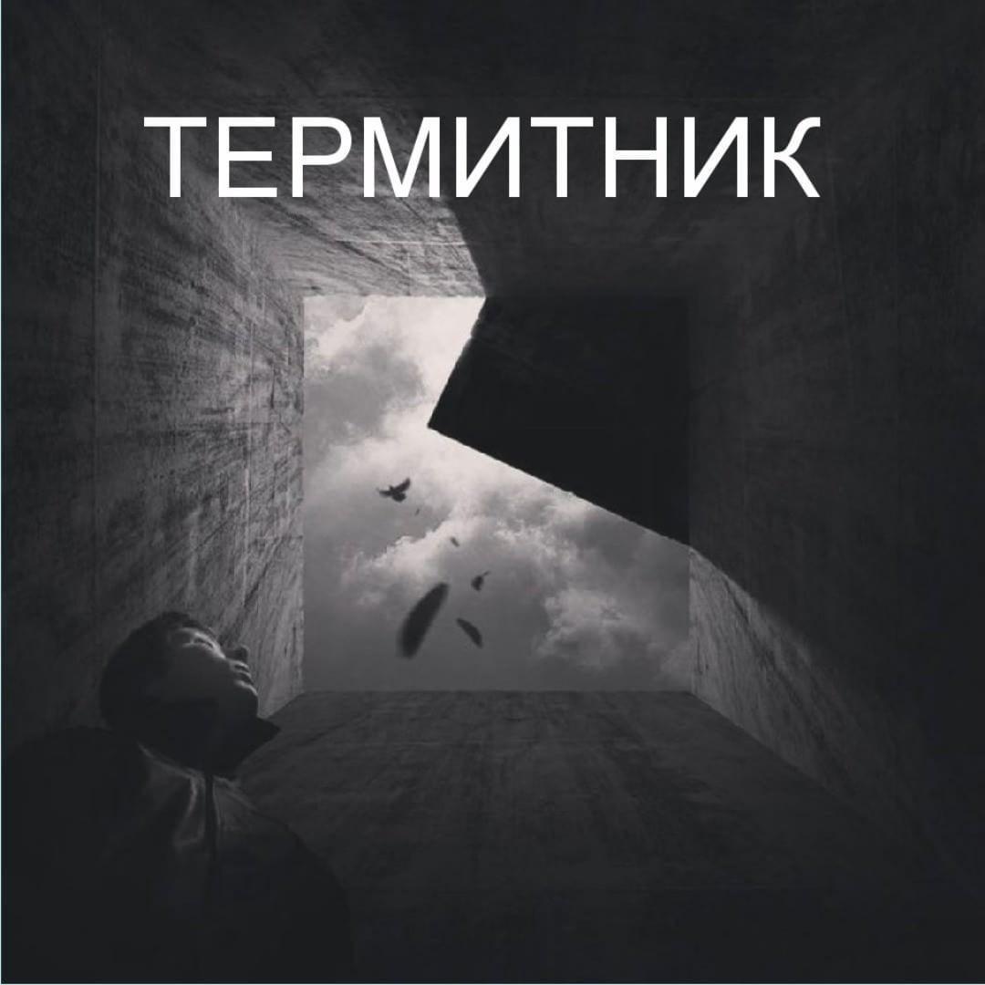 ТЕРМИТНИК