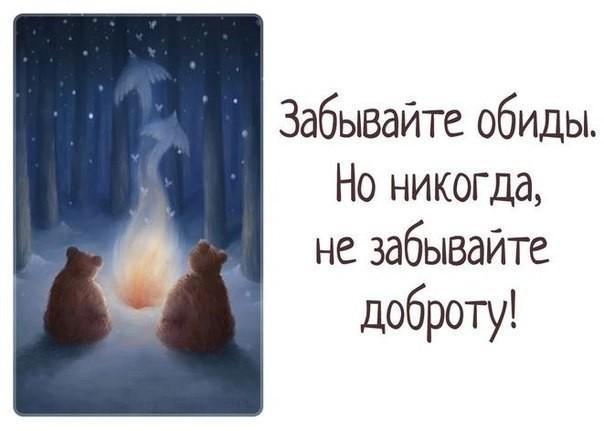 Медведь, открытки с обидой