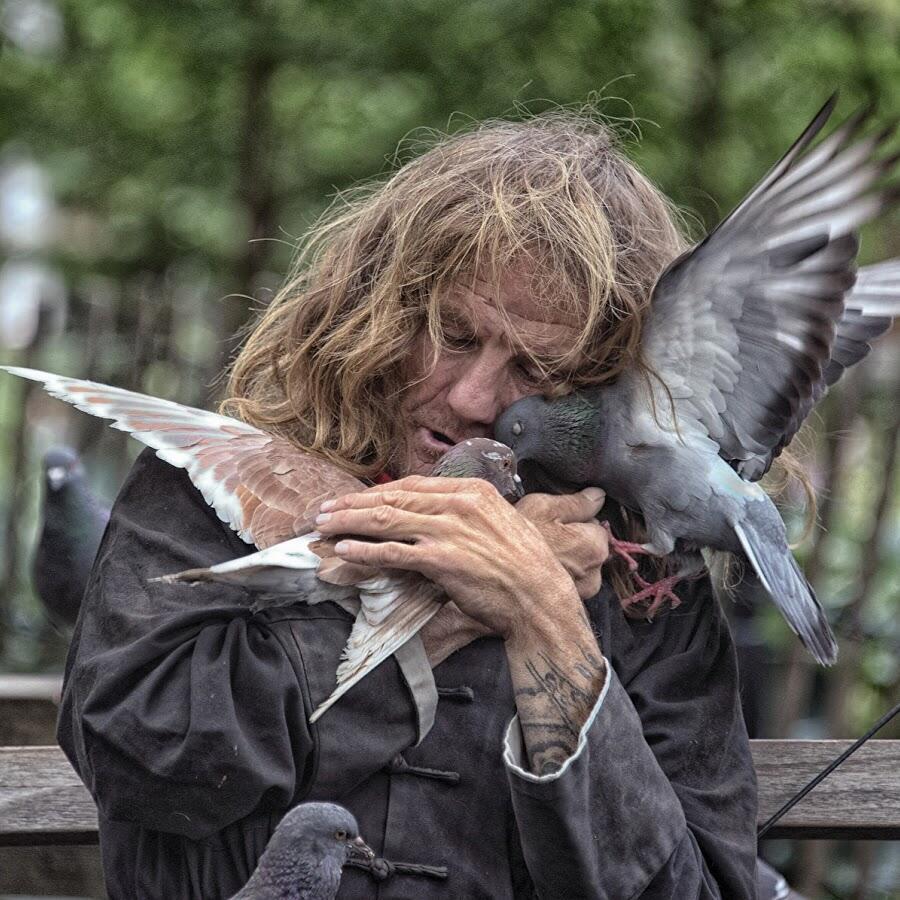 Старик и птица