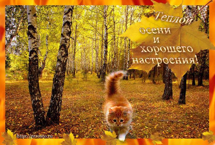 https://s.poembook.ru/user/07/b2/96/dc21985ef8900c125537e16caee887e67963c7b6.jpeg