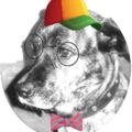 Поэт Джокер Собак, стихи которого вы можете прочитать в поэтической социальной сети Поэмбук.