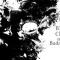 Поэт Черное Облако Над Будапештом, стихи которого вы можете прочитать в поэтической социальной сети Поэмбук.