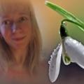 Поэт Светловская, стихи которого вы можете прочитать в поэтической социальной сети Поэмбук.