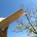 Поэт Иногда Александр, стихи которого вы можете прочитать в поэтической социальной сети Поэмбук.